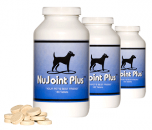 NuJoint Plus®